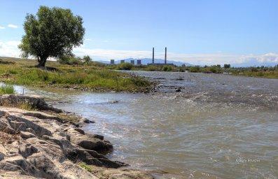 Окрестности г.Тараза.  Река Талас